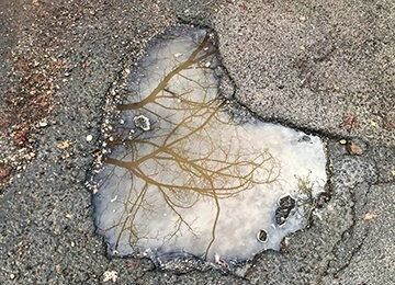 Water-filled pothole on asphalt street, with tree reflected in water