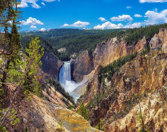 lower falls grand canyon yellowstone national park